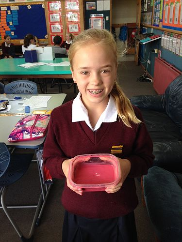 Lauren from Room 2 created an oobleck.